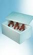 Isolierboxen Lebensmittel