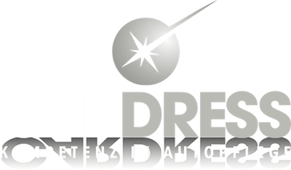 Logo von Car Dress GmbH