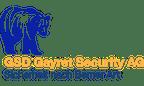 Logo von GSD Gayret Security AG