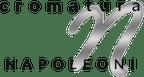 Logo von CROMATURA NAPOLEONI SRL