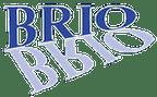 Logo von Brio Kontrollspiegel GmbH