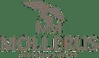 Logo von Maison Mollerus AG