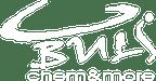 Logo von BULS Chem & More Handels GmbH