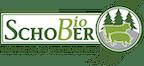 Logo von SCHOBER GMBH