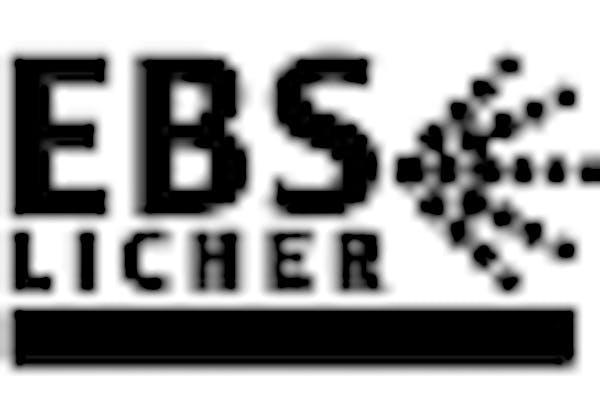 Logo von EBS Licher Oberflächentechnik GmbH