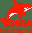 Logo von ORCA Systems GmbH