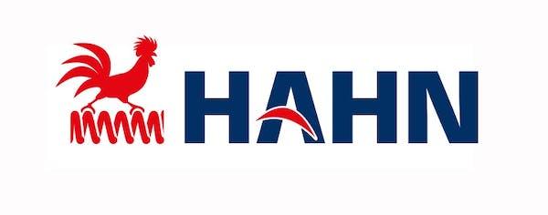 Logo von Gebrüder Hahn GmbH