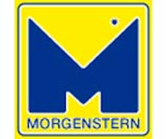 Logo von Morgenstern Lackieranlagen Metallbau GmbH