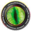 Logo von GreenMamba-Studios