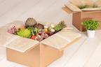 Versandverpackungen aus Hanf bei MEDEWO