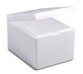 EPS-Thermo-Transportboxen
