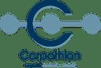 Logo von CARPATHIAN TRANSPORT LINE GmbH