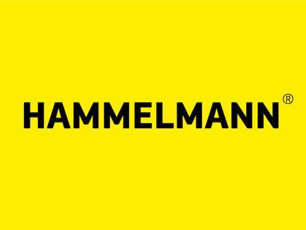 Logo von Hammelmann GmbH