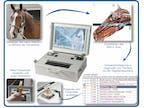 Ablaufschema Metavital Horse