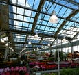 LED Hallenbeleuchtung Floristik