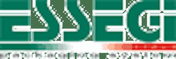 Logo von ESSEGI 2 SRL