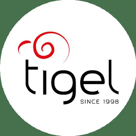 Logo von Ti-gel Sagl